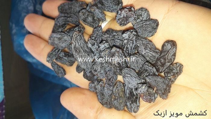 قیمت کشمش مویز ازبک