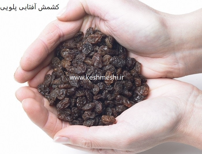 قیمت کشمش اصفهان