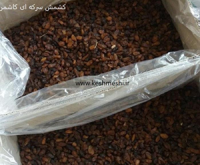 خرید کشمش تهران